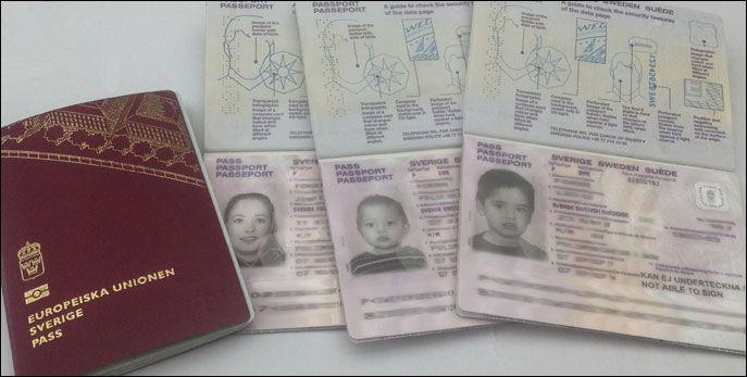 pass danmark barn 2019